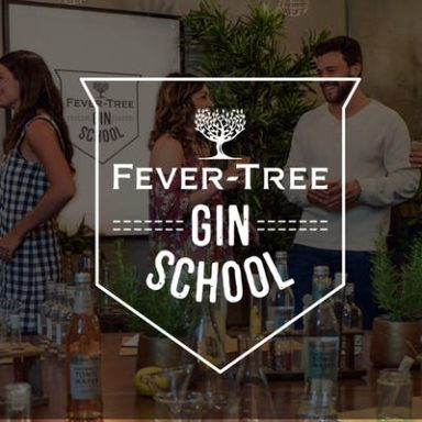 FEVER-TREE GIN SCHOOL