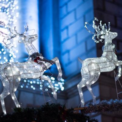 Belfast Christmas 0038